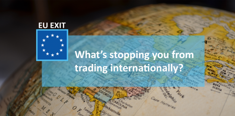 what's stopping you from trading internationally