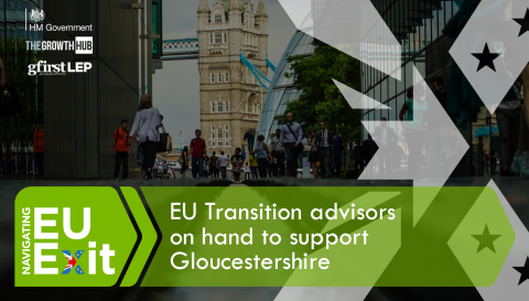 EU Transition Advisors appointed