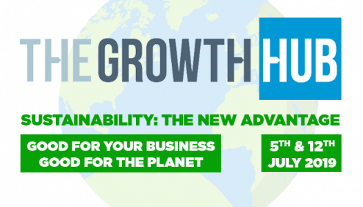 the growth hub sustainability programme